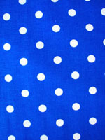 Sky Blue White Poka Dot